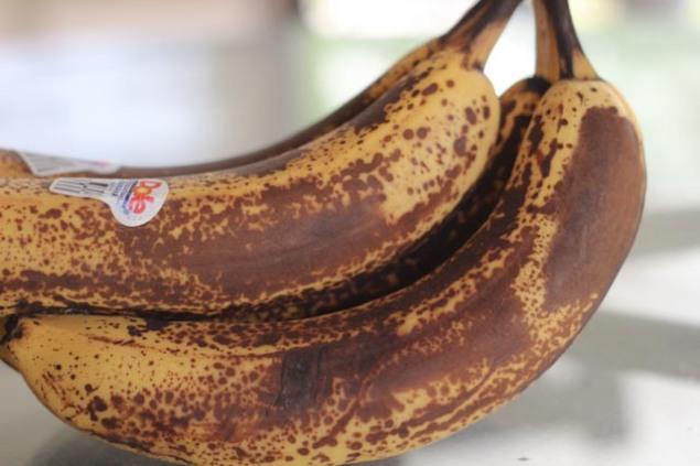 bananabreadandgarden05062013