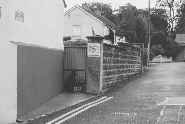 Athy - Ireland-32