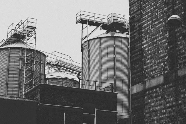 Guinness Factory and Dublin - Ireland-5