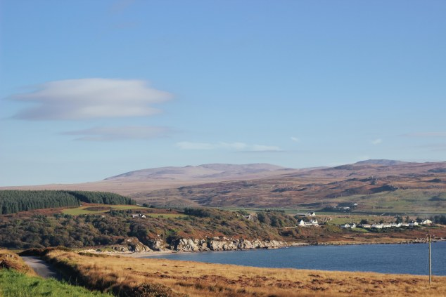 Islay cows and landscape-10