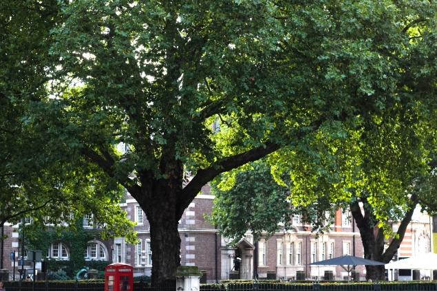 London-48