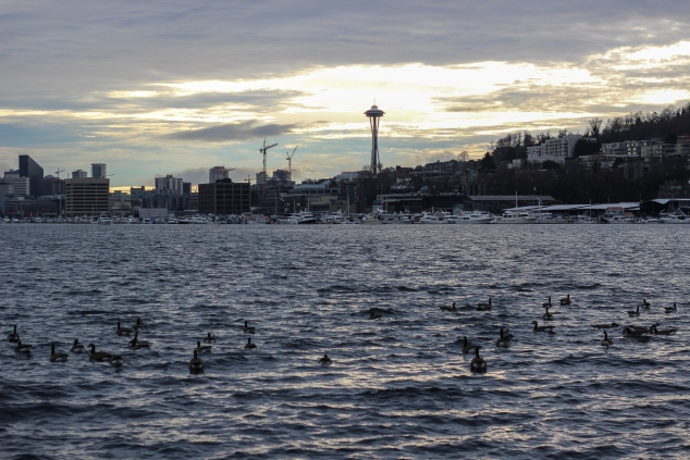 Seattle_-26