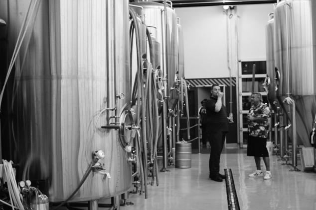Bottle Logic Brewery Soft Opening-11