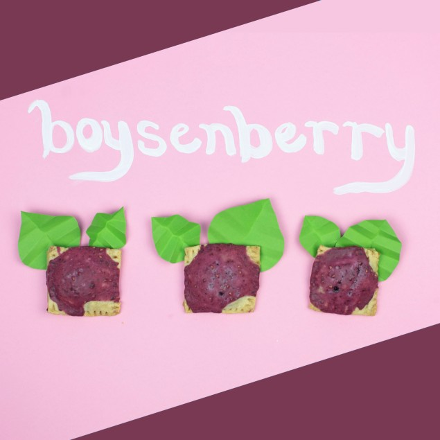 Boysenberry Bottle Logic Pop Tarts